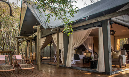 luxury tented camps south africa